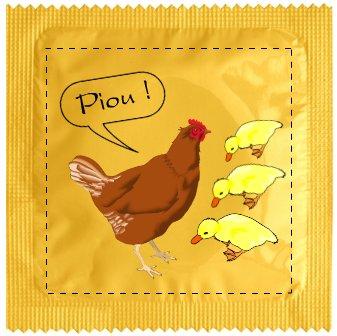 préservatif poule et poussins